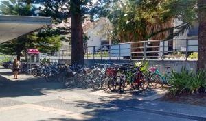manly-bike-rack